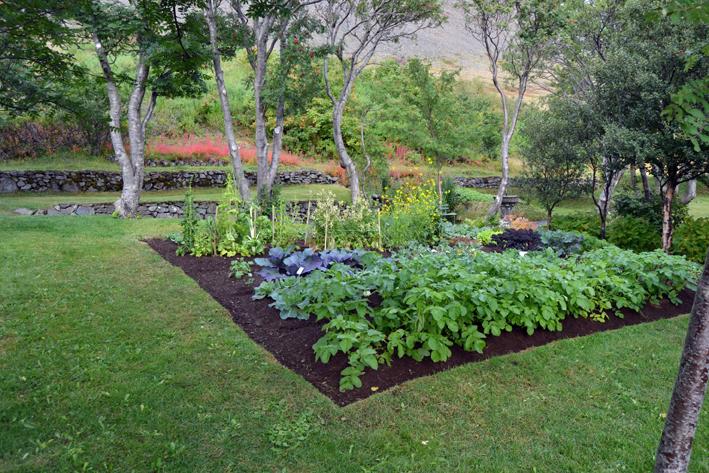 Premio internazionale carlo scarpa per il giardino casa for Orto giardino